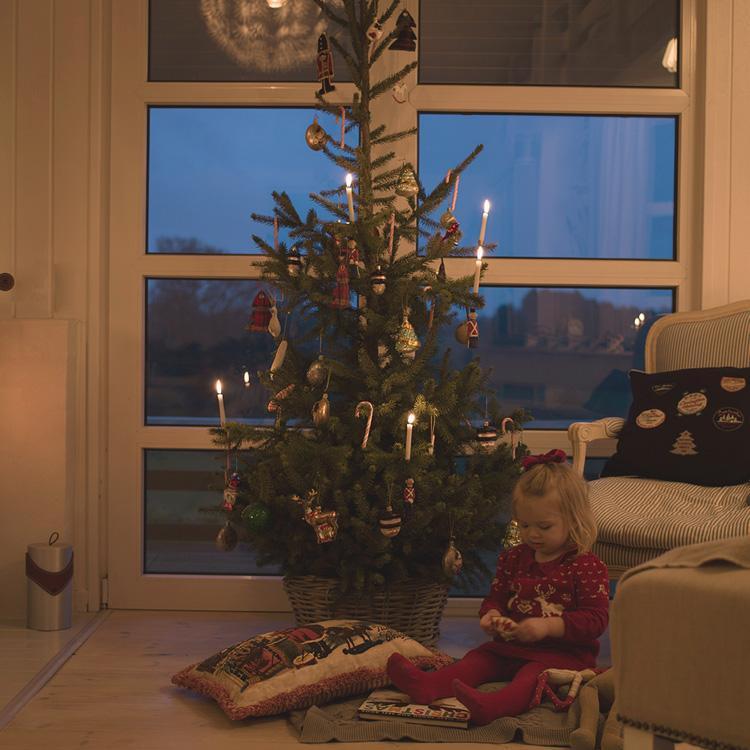 jul 2 billeder4